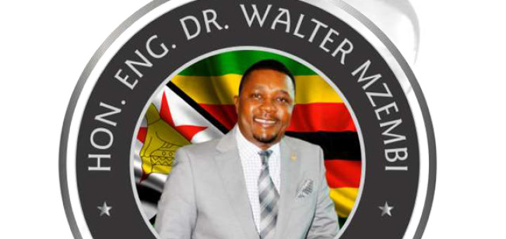 Walter Mzembi, Africa's Candidate for UNWTO post.